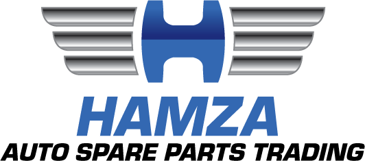 Hamza Oil Seals